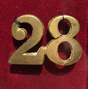 28 Pin